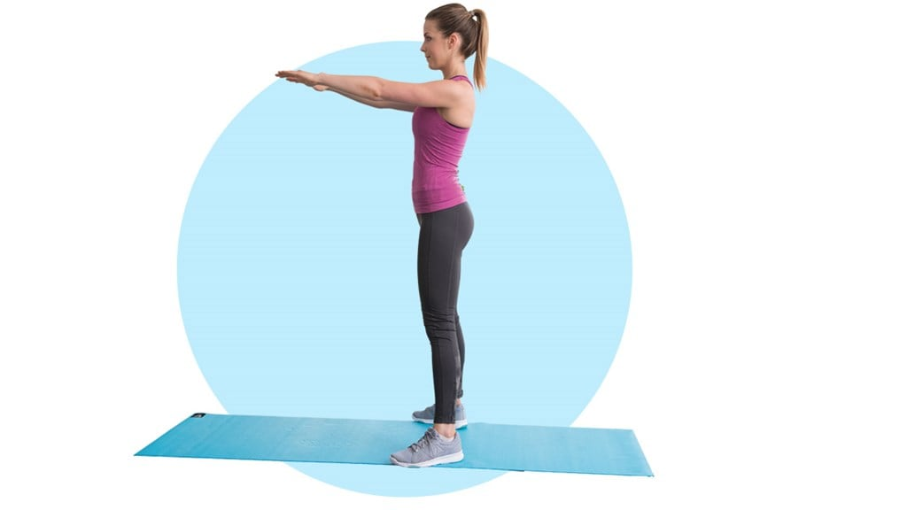 Fitness exercise - Squats